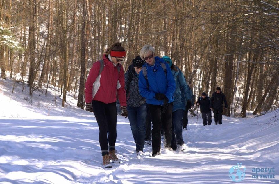 Lasy Oliwskie zimowa wycieczka
