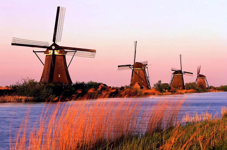 Ceny w Holandii w 2013