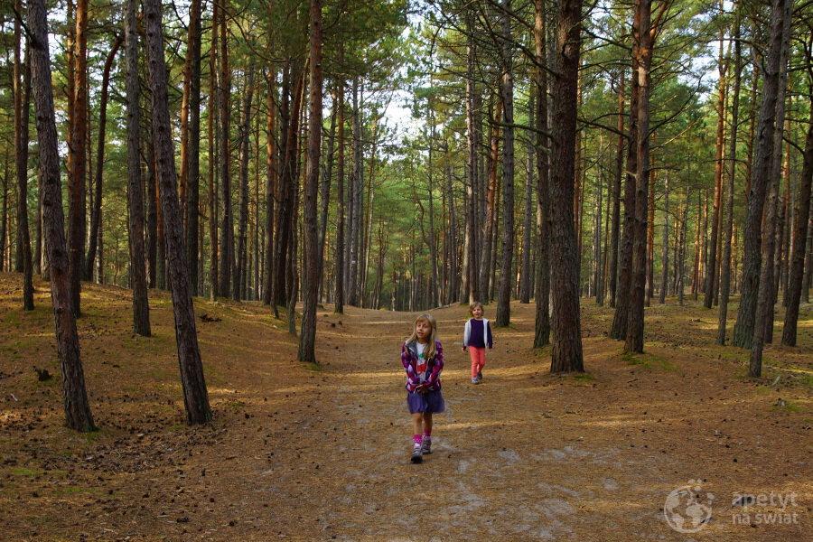 Barwy jesieni - Słowiński Park Narodowy