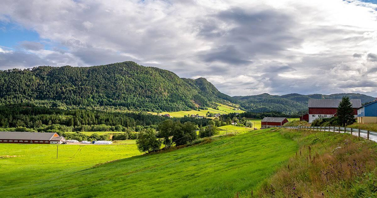 Pejzaż norweskiej wsi