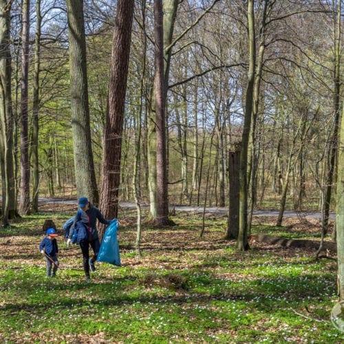 Dzień Ziemi - Czas na las