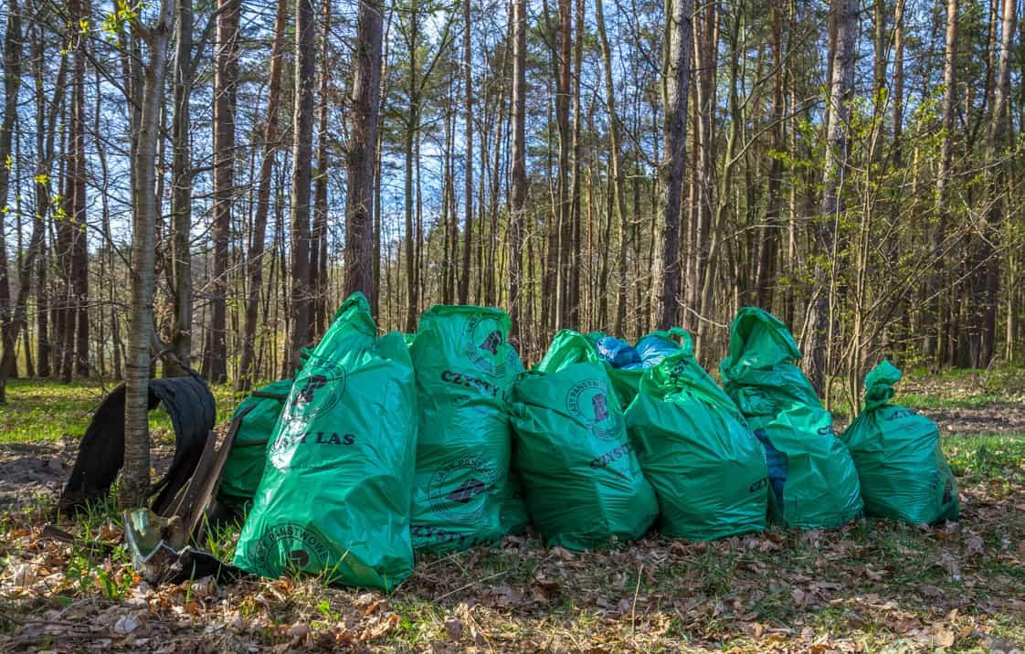 Dzień Ziemi - Czas na las - worki śmieci w lesie