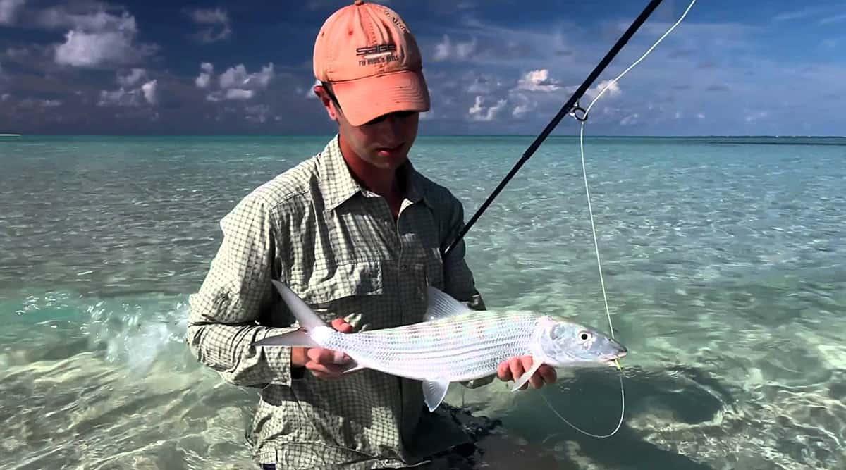 Malediwy - połów ryb