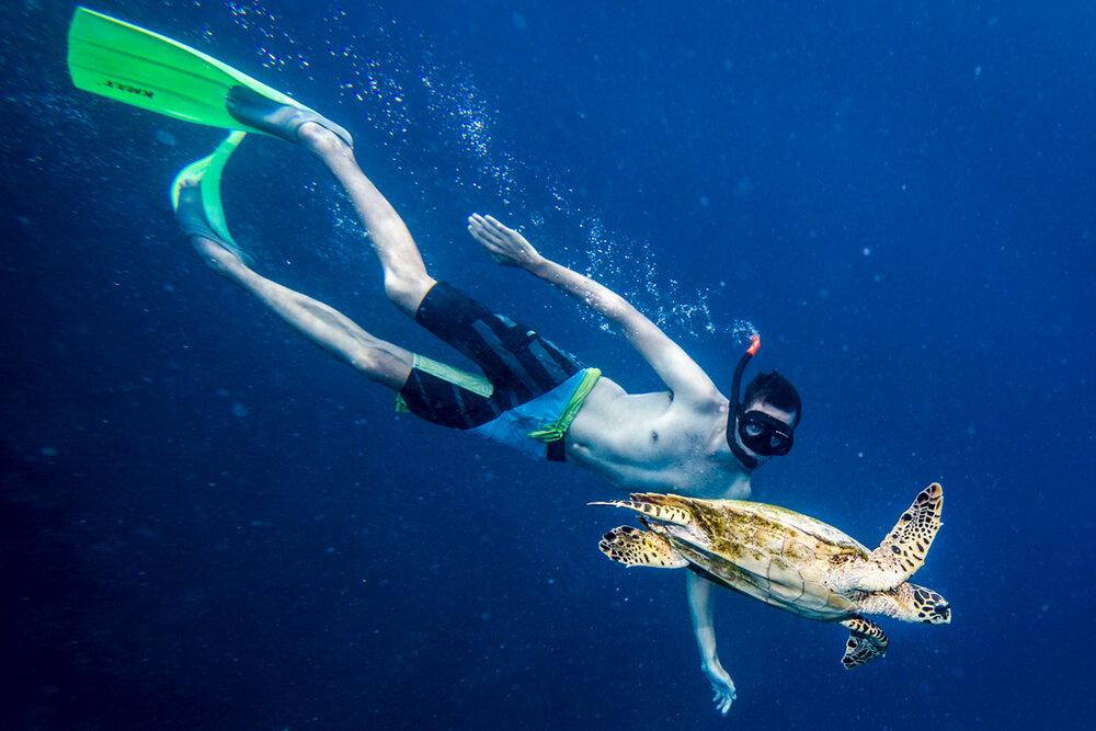 Snorkelling zżółwiem naMalediwach