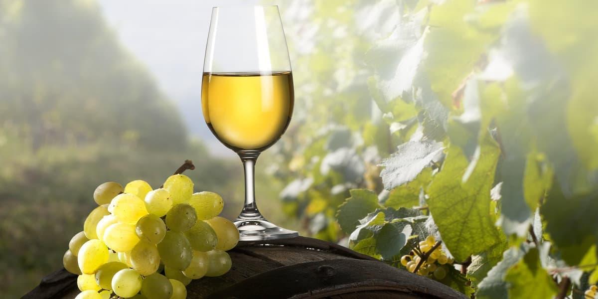 Słowenia wino