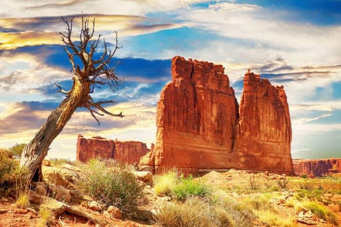 American Dream – Zachodnie Parki Narodowe USA i Yellowstone