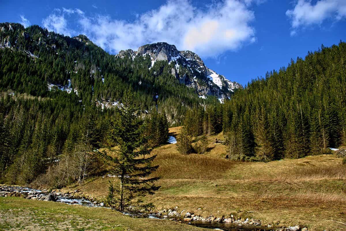 Dolina Kościeliska w Tatrach