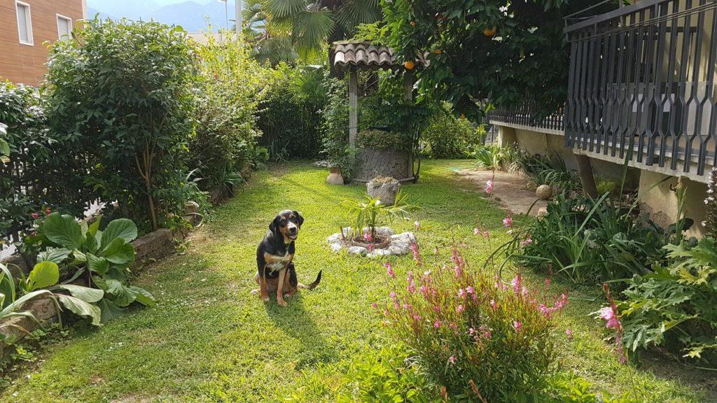 Ogród - nocleg we Włoszech
