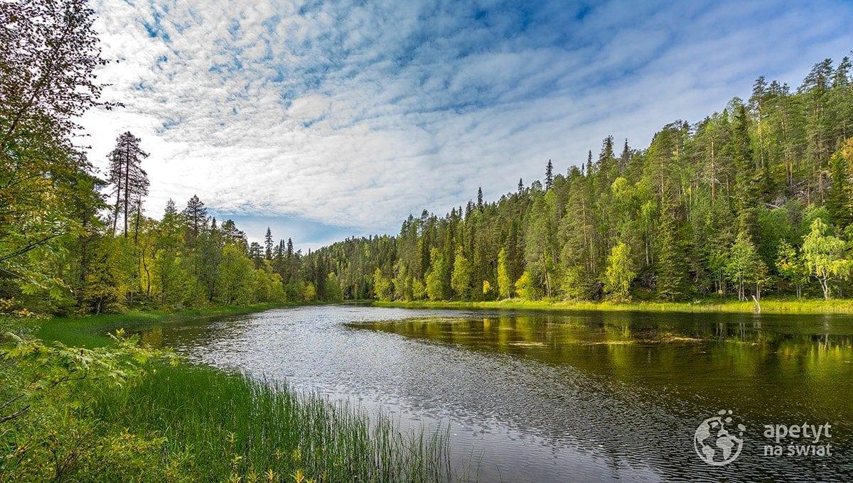 Szlak Karhunkierros, jezioro, jesień
