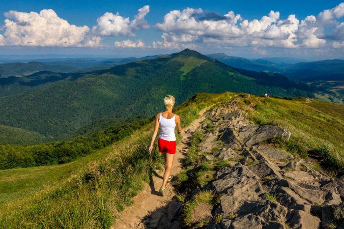 Bieszczady – naszlaku zApetytową watahą