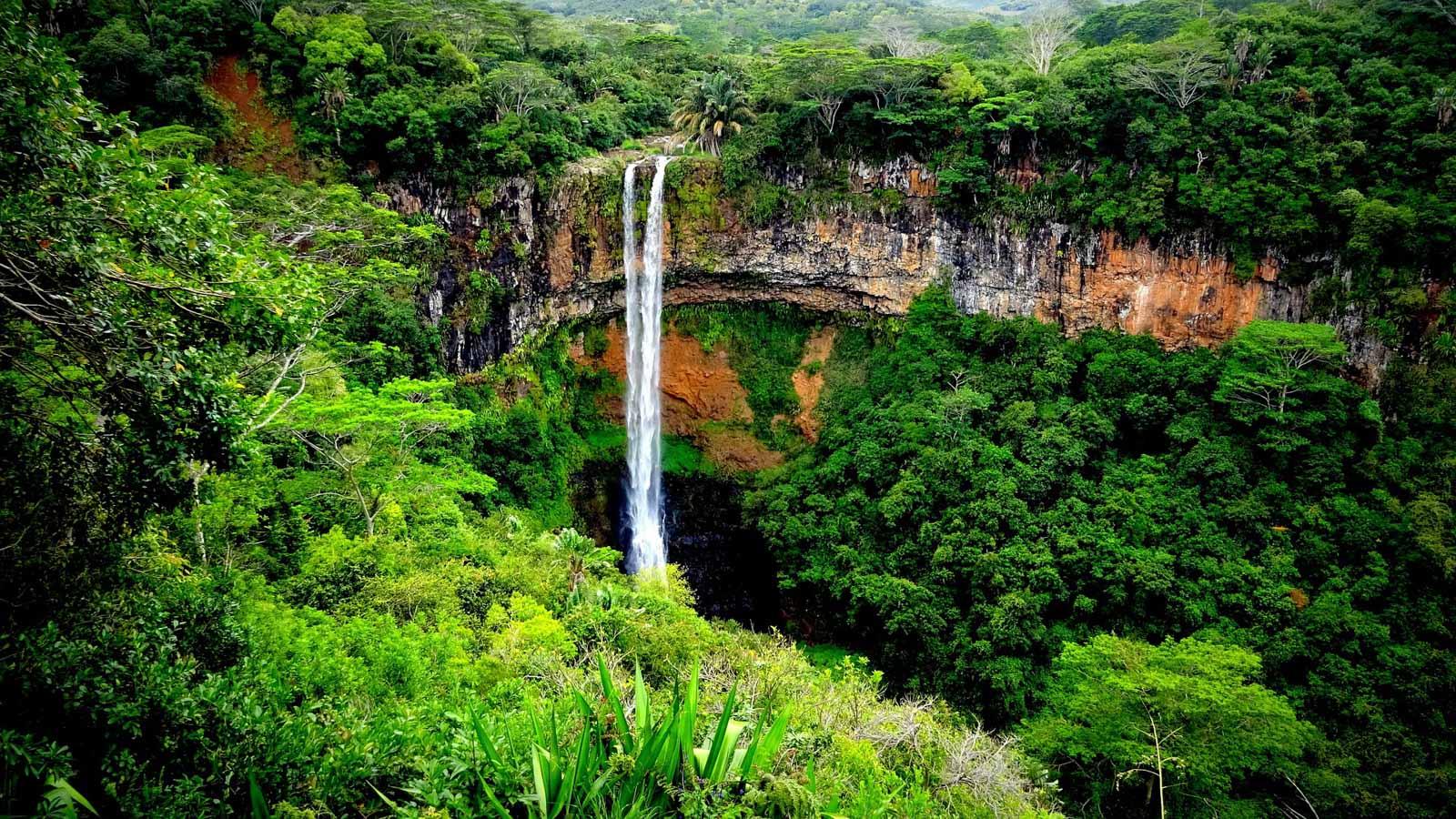 Mauritius, las deszczowy, wodospad wdżungli, rajskie wakacje