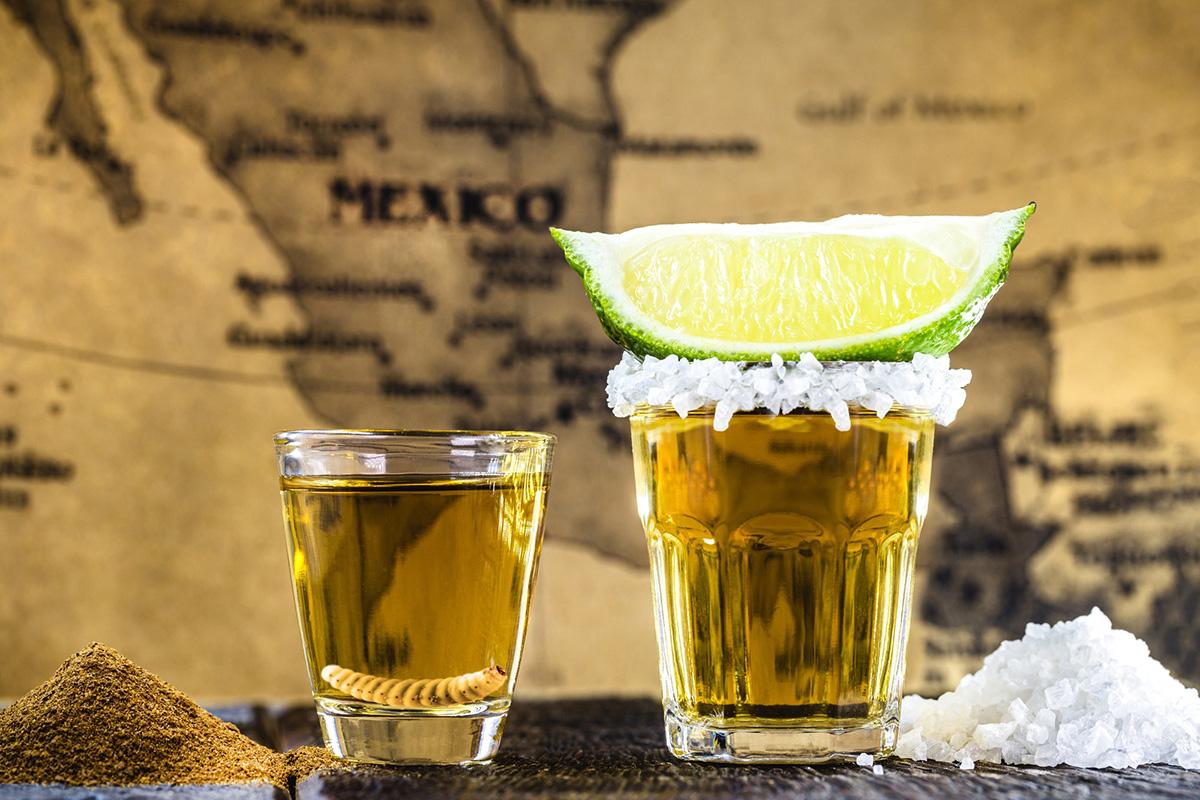 Meksyk - wyprawa - Mezcal - tequila zlarw膮