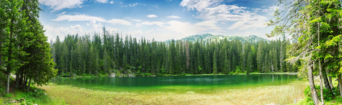 Czarnogóra - jezioro Czarne - Park Narodowy Durmitor