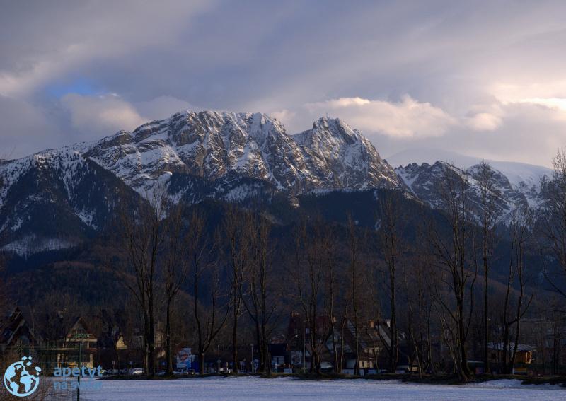 Poszukiwanie krokusów w Tatrach – 2013